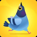 Pigeon Pop MOD APK (Unlimited Money) 1